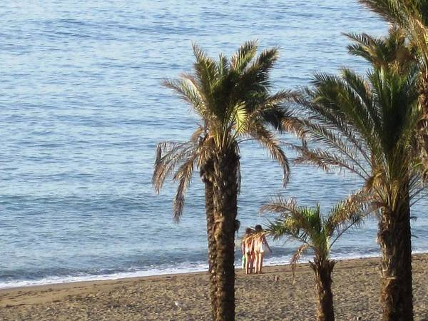 Photograph - Bikini Girls And Palm Trees At Costa Del Sol Beach Spain by John Shiron