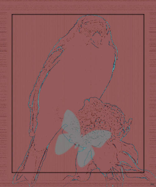 Butterfly On Flower Digital Art - Bird Of A Flower Design by Debra     Vatalaro