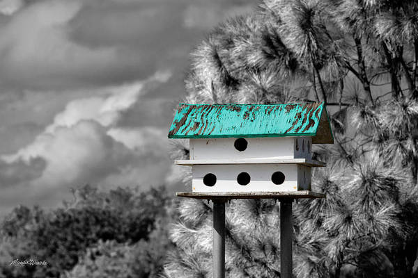 Photograph - Birdhouse With Teal Roof by Michelle Constantine