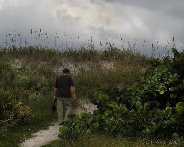 Photograph - Birding The Dunes by Grace Dillon