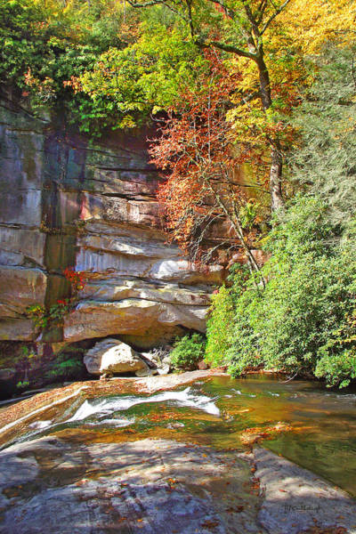 Photograph - Birdrock Falls In The Fall by Duane McCullough