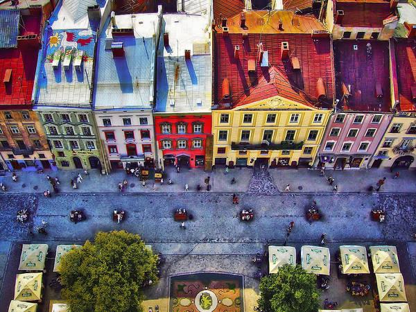 Wall Art - Photograph - Bird's Eye View by Evelina Kremsdorf