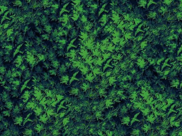 Digital Art - Birds In Green by David Dehner