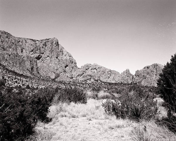 Photograph - Black And White Green Gulch by M K Miller
