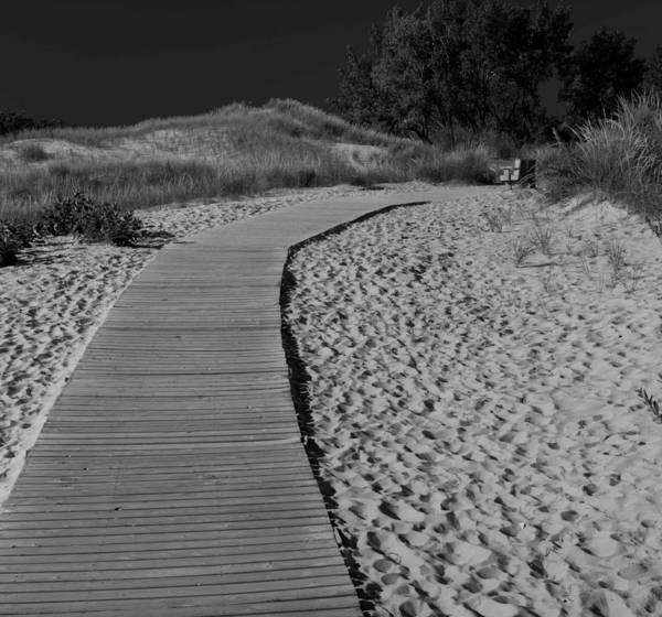 National Lakeshore Wall Art - Photograph - Black And White Sleeping Bear Dunes by Twenty Two North Photography