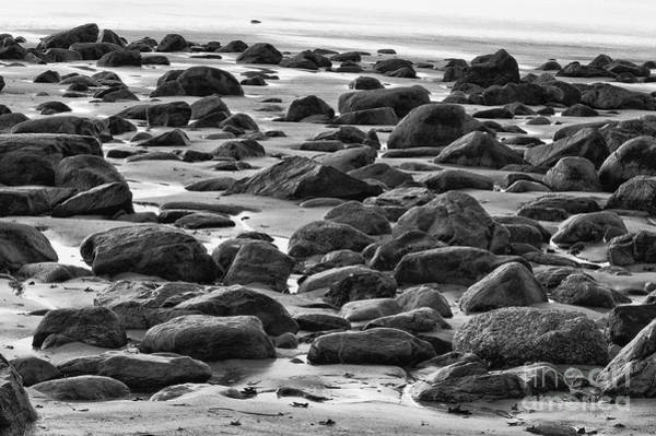 Black And White Wet Rocks Art Print