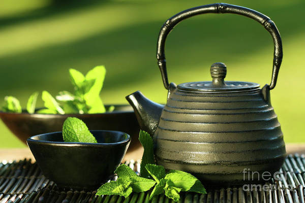Traditional Chinese Medicine Wall Art - Photograph - Black Asian Teapot With Mint Tea by Sandra Cunningham