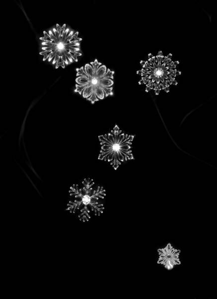 Photograph - Blank Front Snowflake Card by Beverly Cash