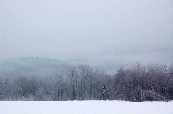 Photograph - Bleak Mid-winter by Mary McAvoy
