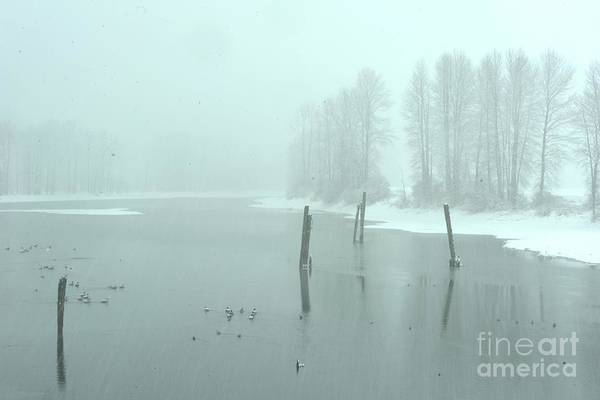 Mission Bc Photograph - Blizzard At The Nicomen Slough by Rod Wiens