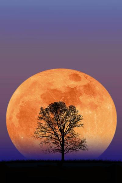 Photograph - Blood Moon Rising by Larry Landolfi