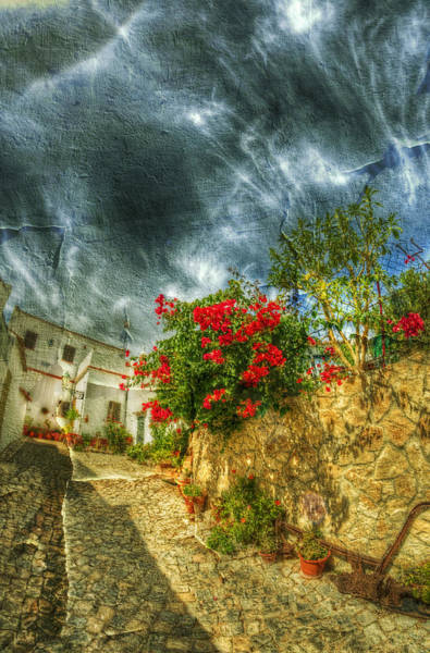 Wall Art - Photograph - Blooming Village by Nathan Wright