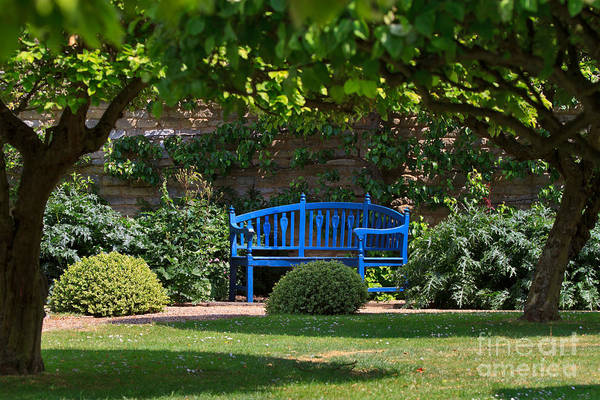 Rutland Photograph - Blue Bench By The Garden Wall by Louise Heusinkveld