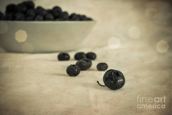 Photograph - Blue Berries Vintage by Hannes Cmarits