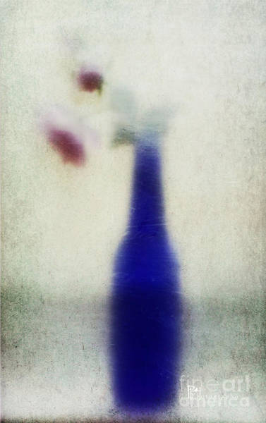 Photograph - Blue Bottle by Pam  Holdsworth