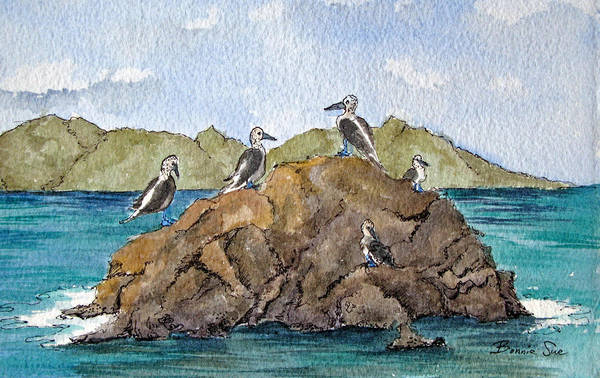 Boobies Painting - Blue Footed Boobies In Galapagos by Bonnie Sue Schwartz