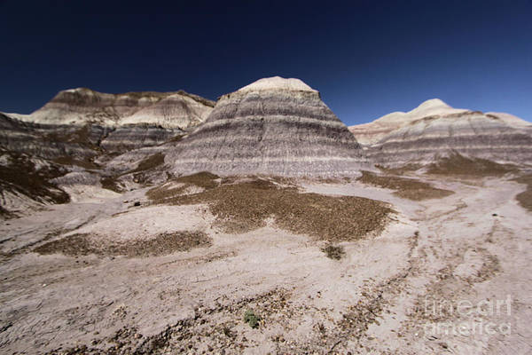 Photograph - Blue Mesa At Petrified Forest by Adam Jewell