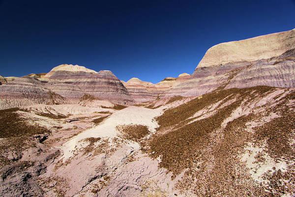 Photograph - Blue Mesa Landscape by Adam Jewell