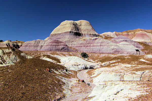 Photograph - Blue Mesa Tower by Adam Jewell