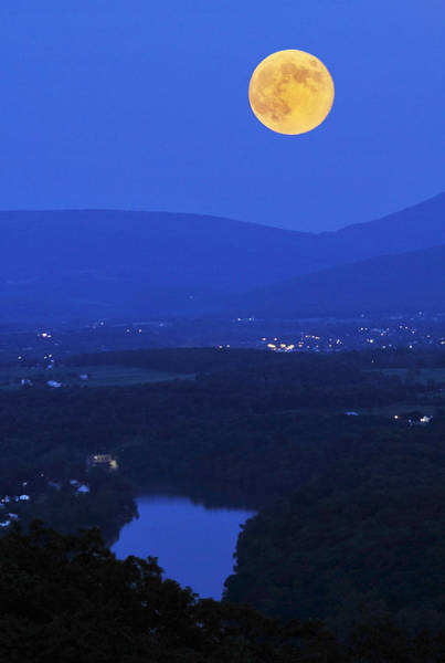 Photograph - Blue Moon by Lara Ellis