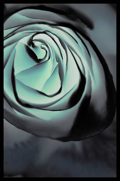 Filoli Photograph - Blue On Blue by Linda Dunn