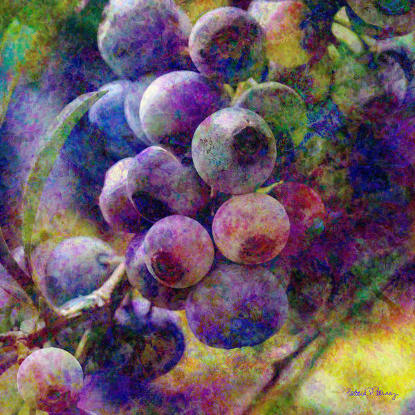 Digital Art - Blueberries by Barbara Berney