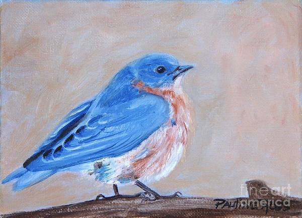 Wall Art - Painting - Bluebird by Pauline Ross