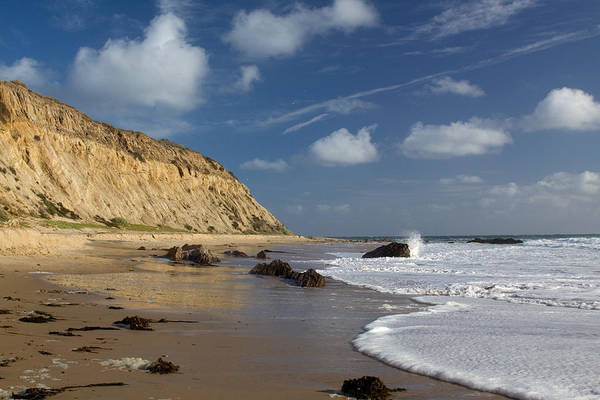 Photograph - Bluffs At Crystal Cove by Cliff Wassmann