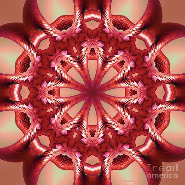 Digital Art - Blushing Flower Kaleid by Deborah Benoit