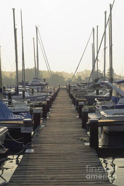 Photograph - Boat Dock Solomons Island by Thomas R Fletcher