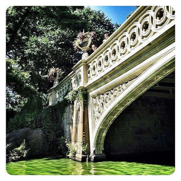 Wall Art - Photograph - Boating Below The Bridge by Natasha Marco