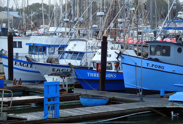 Photograph - Boats Docked In Harbor by Jeff Lowe