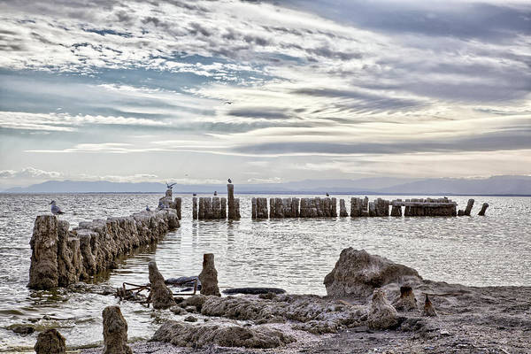 Photograph - Bombay Beach Salton Sea 2 by Peter Dyke