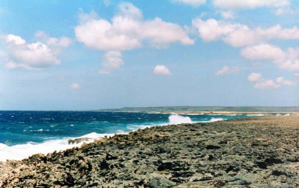 Photograph - Bonaire Shore 3 by C Sitton