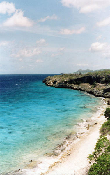 Photograph - Bonaire Shore by C Sitton