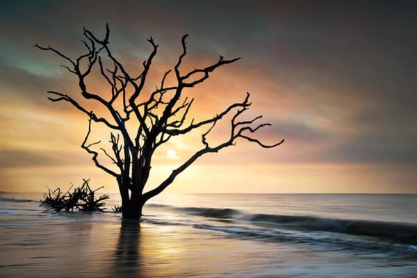 Glare Photograph - Boneyard Sunrise - Botany Bay Edisto Island Sc by Dave Allen