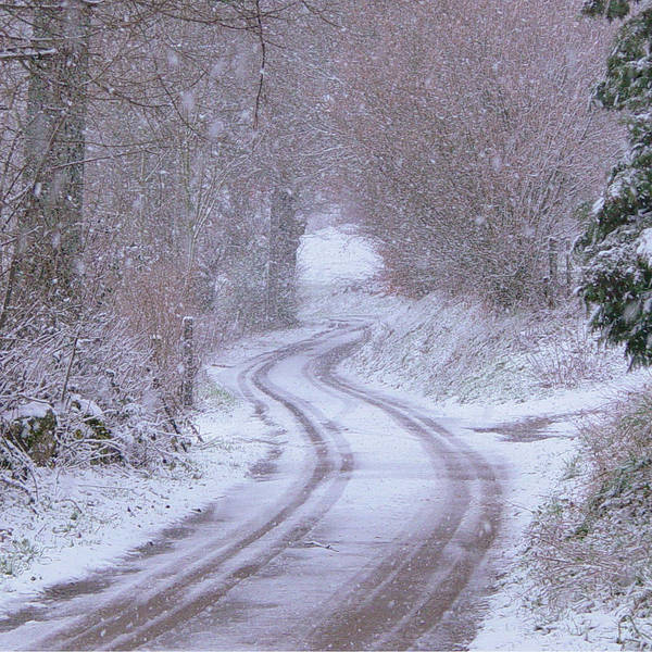 Photograph - Bonjean In The Snow by Georgia Fowler