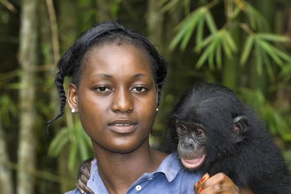 Bonobos Photograph - Bonobo Ape Conservation by Tony Camacho