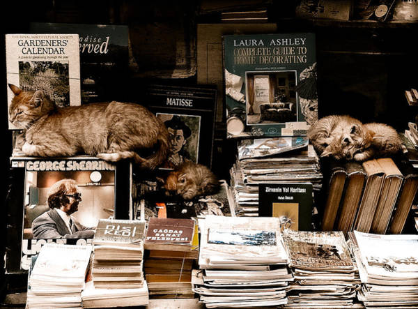 Istanbul, Turkey - Bookkeepers Art Print