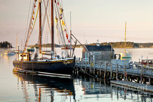 Photograph - Boothbay Morning by Susan Cole Kelly
