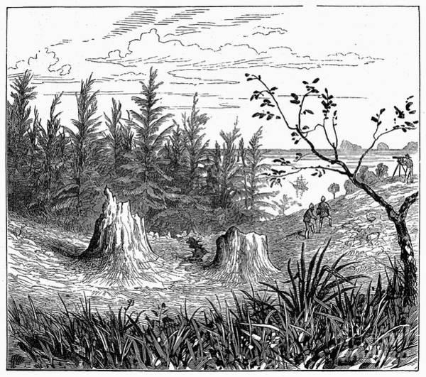 Photograph - Borneo: Mud Volcano, 1881 by Granger