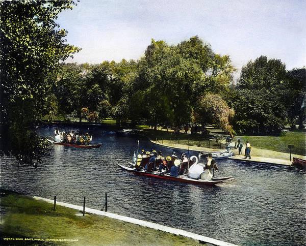 Swan Boats Photograph - Boston: Swan Boats, C1900 by Granger