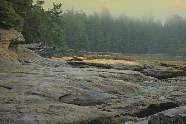 Photograph - Botanical Beach View by Marilyn Wilson