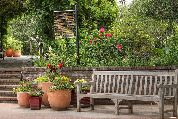 Photograph - Botanical Gardens Bench And Flower Pots by Sarah Broadmeadow-Thomas