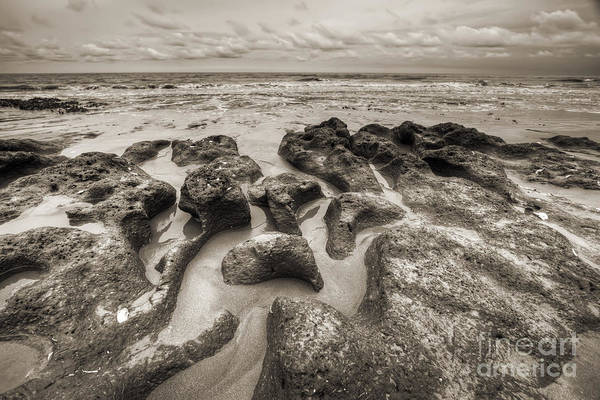Clay Photograph - Botany Bay Clay Sands by Dustin K Ryan