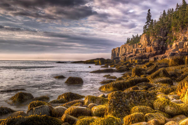 Photograph - Boulder Beach In Morning Light by At Lands End Photography