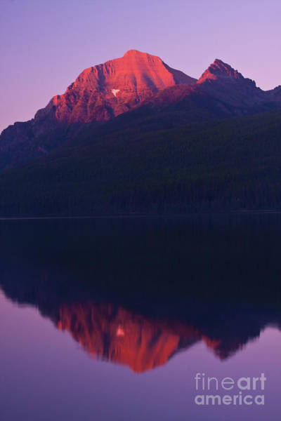 Photograph - Bowman Lake Twilight by Katie LaSalle-Lowery
