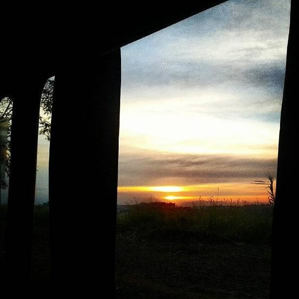 Bus Photograph - Br 356. #sunset  #bus  #inthewindow by Elis Regina Martins