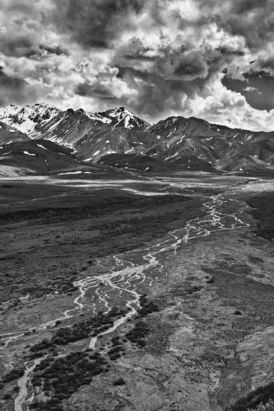 Photograph - Braided River by Wes and Dotty Weber