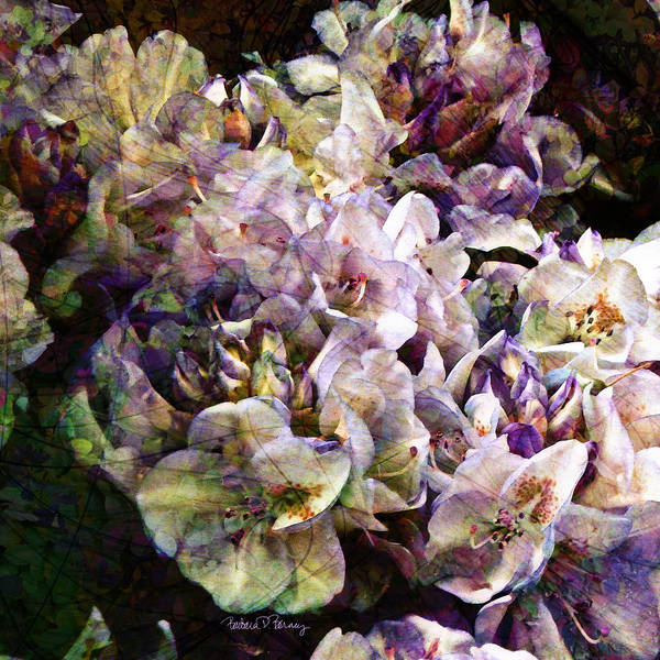 Digital Art - Bridal Bouquet by Barbara Berney
